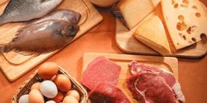 Alimentos Processados Carnes Pescados Derivados E Ingredientes Substitutos