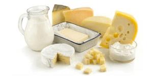 Alimentos Processados Productos Lácteos Derivados E Ingredientes Sustitutos
